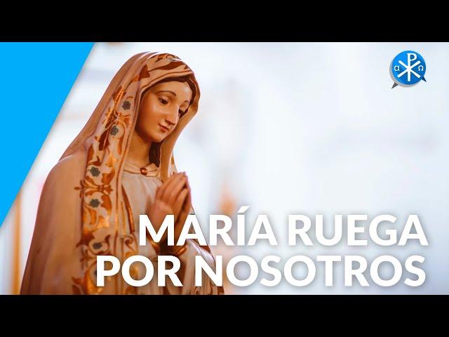María ruega por nosotros | Perseverancia - P. Gustavo Lombardo