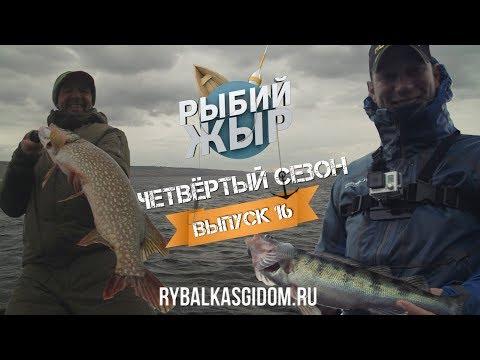 Рыбалка в Сызрани на Саратовском водохранилище. Рыбий жЫр 4 сезон выпуск 16