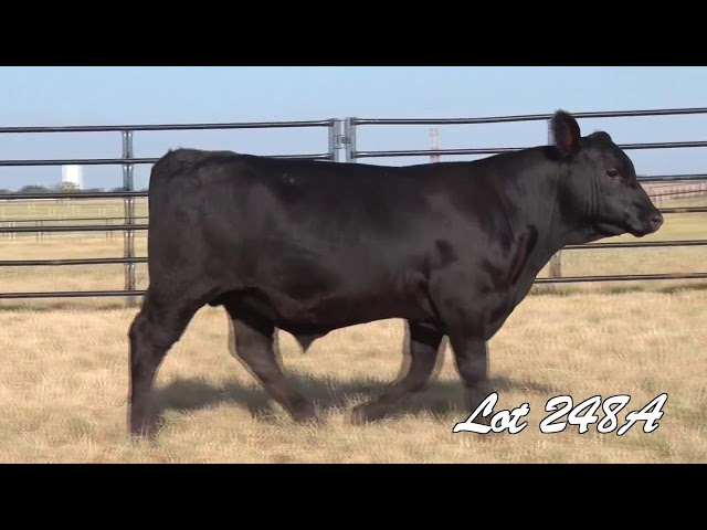 Pollard Farms Lot 248A