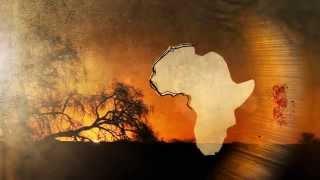 African Safari Tours - African Sky