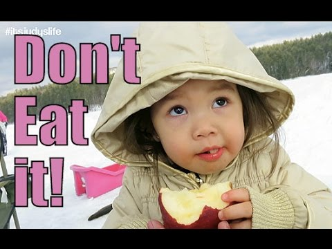 Don't Eat It!!!- February 22, 2015 ItsJudysLife Vlogs