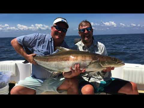 20180629 Cobia Fishing At Windmill Point - Chesapeake Bay
