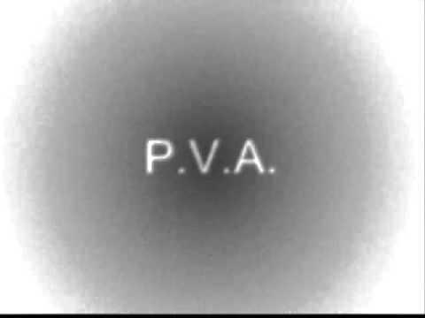 p.v.a. - Mládenec