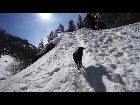 Tahoe: A Snowy Paradise - Pushing North 38
