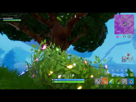 Fortnite my first victory/become one with the bush!