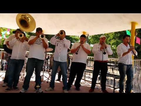 Banda Paloma-popurri paloma (paloma mexican music band) cel-6871176144- mexican brass band-brass