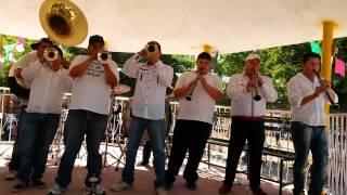 Banda Paloma-popurri paloma (paloma mexican music band) cel. 6871176144 mexican brass band