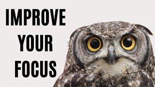 14 Ways to Impŗove Your Focus | How to Focus Better