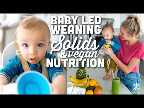 Starting Solids, Baby Led Weaning, & Vegan Infant Nutrition