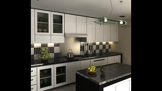 Black and white kitchen designs ideas