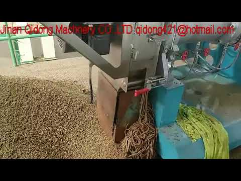 Jinan Qidong 1.5- 2TH Fish Feed Twin Screw Extruder For Indian Client