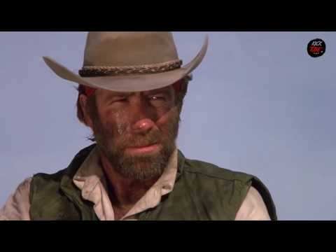 Chuck Norris Ultimate Orgy Funny Video