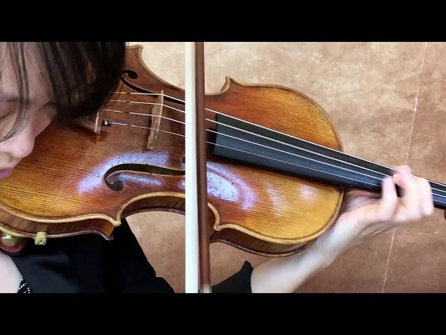 Ifstrings Master Build deluxe Wood 2019 #015 Guarneri del Gesu 1745
