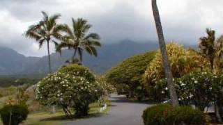 Ricky King-Blue haweii,Aloha Oe,Haweii Tattoo