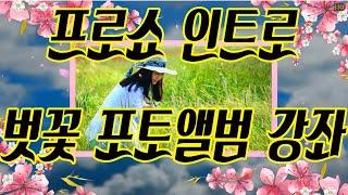 프로쇼 인트로 벗꽃 포토앨범 만들기 강좌