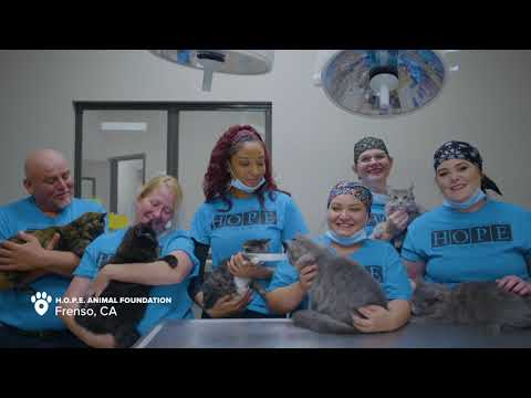 PetSmart Charities Celebrates 25 Years In Your Community
