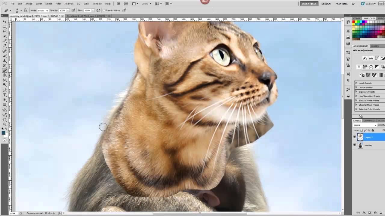 Hybrid Animal Photoshop Tutorial