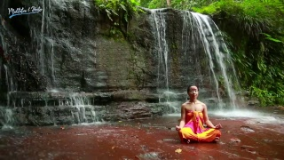 Nature Sounds - Live 24/7 | Tropical Waterfall with Rainforest | Water Sound Nature Meditation