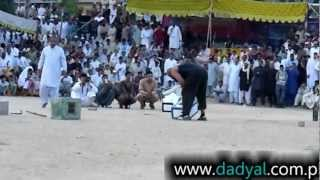 Weight Lifting Competition in Dadyal , Stone Lifter from Mirpur AJK, Haji Wajid Picks up 172 KG
