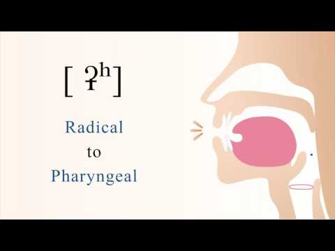 [ ʡʰ ] unvoiced aspirated radical pharyngeal stop