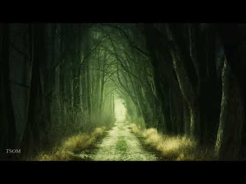 Savfk - Another Door | Beautiful Neoclassical Music
