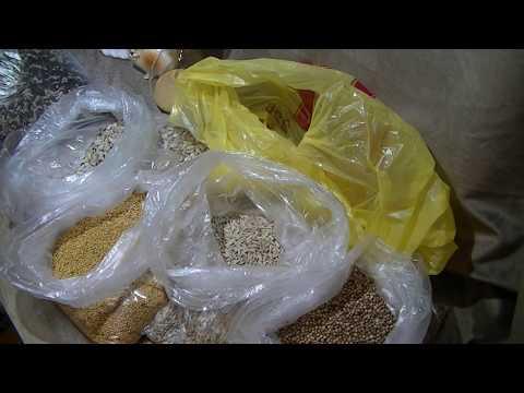 Где купить зерно для проращивания.