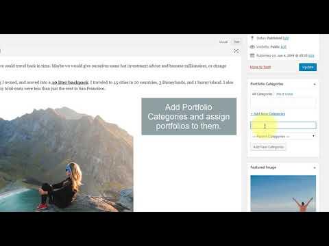 How to create Portfolio page and Portfolios? | Blossom Travel WordPress Theme
