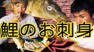 鯉を捌いて刺身で食す!