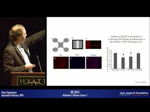 Tau Immunotherapy and Imaging - Einar Sigurdsson