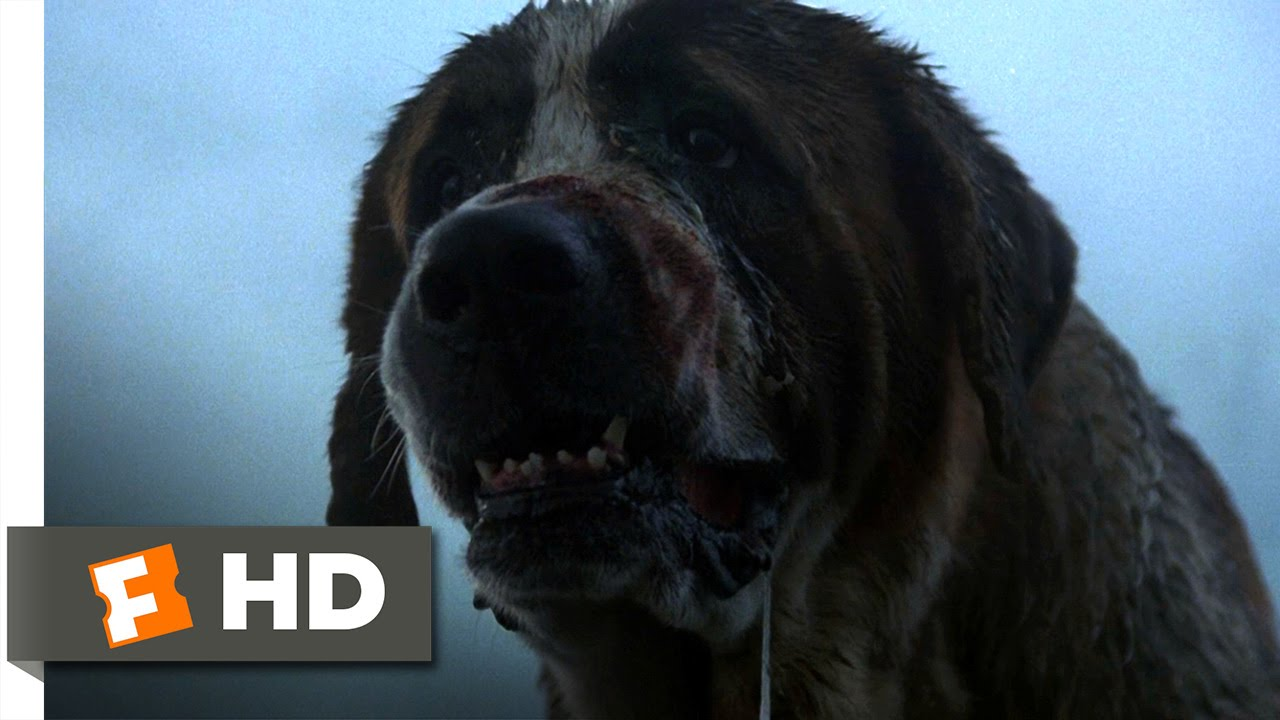 Cujo (3/8) Movie CLIP - What's the Matter? (1983) HD