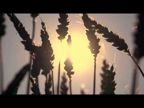 Bible Readings and Hymns - Titus 2
