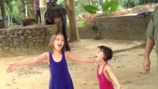 CrazyTraveler Sri Lanka iMovie