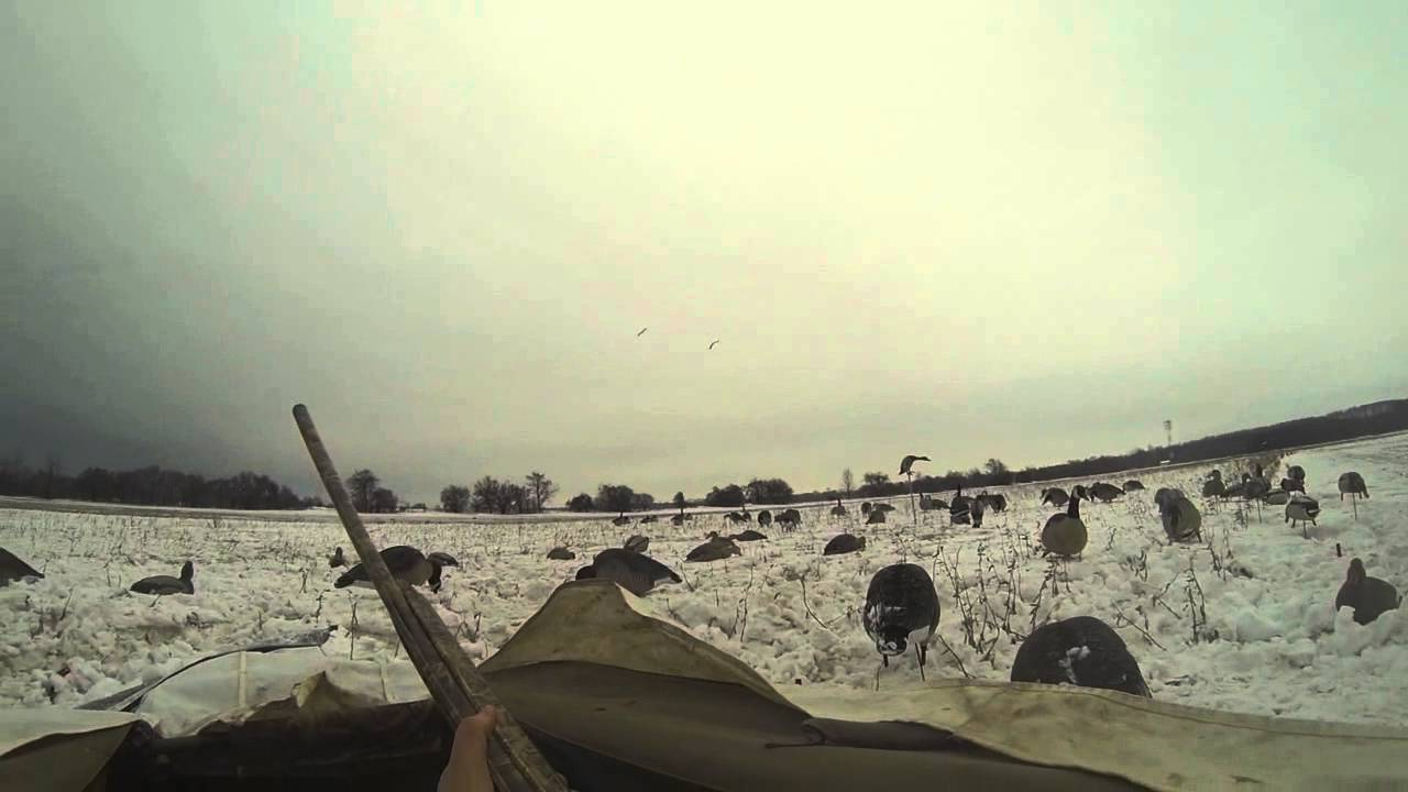 Canada Goose jackets outlet shop - Late season waterfowl hunt Ontario 2015 - YouTube