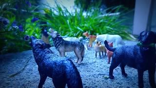 #Paws by Claws ep.17 # toys  #shepherd dog #kristina kashytska  #wolf toys