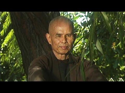 Diez movimientos conscientes - Plum Village y Thich Nhat Hahn