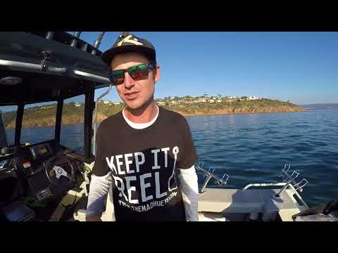 Hook Line and Sinclair ep1 port phillip how to fish squid snapper gummy