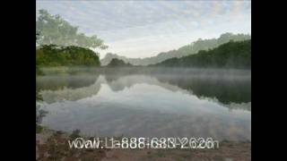 New York Land for Sale upstate New York Land Sale 062609
