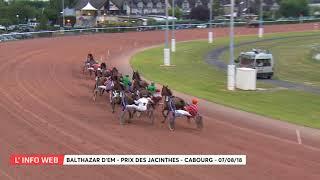 Vidéo de la course PMU PRIX DES JACINTHES