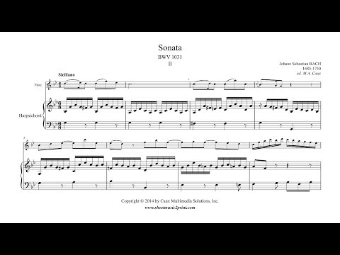 Bach : Siciliano from Sonata BWV 1031 - Flute