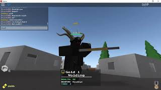 Bullet HELL Solo ROBLOX Got 42 kills by myself