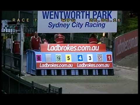Download WENTWORTH PARK-25052016-RACE-7