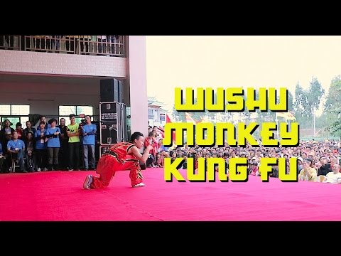 Wushu Monkey Form