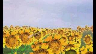 Plastic Sky (original) Music, Words an Vocals by RoVo arr., progr. ...