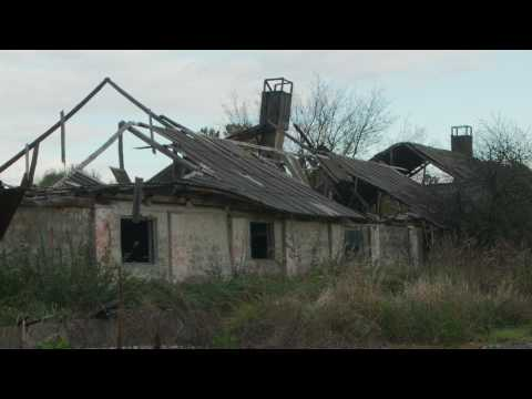 The Babushkas of Chernobyl - Trailer