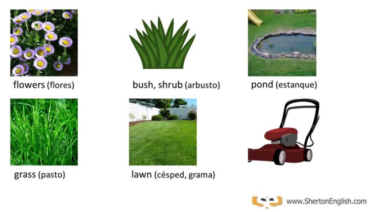 Vocabulario ingl s el jard n the garden youtube for Jardin en ingles