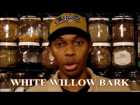 Herbs 101 White Willow Bark