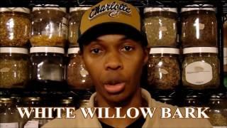 herbs 101 white willow bark