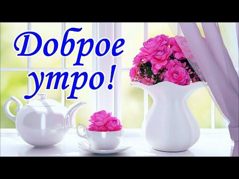 С Добрым утром! Хорошего дня. Красивое пожелание с добрым утром. Открытка с добрым утром