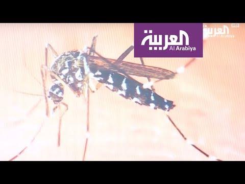 حمى غامضة تقتل عشرات السودانيين  - نشر قبل 11 ساعة