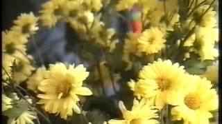 Документальный фильм «Целитель» о народном целителе Валерии Валентиновиче Кустове